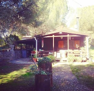 Pretty wood cabin whit a big and peaceful garden - Uceda