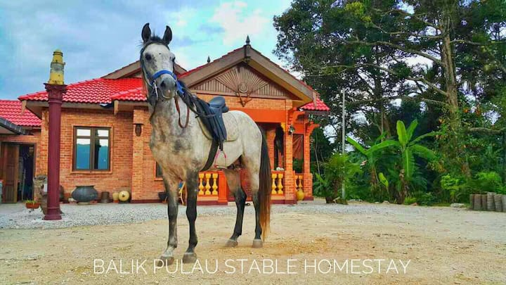 Balik Pulau Stable Homestay (Villa)