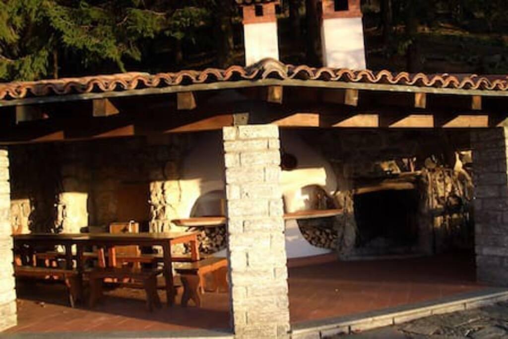 La taverna nel bosco
