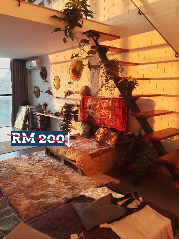 A super cozy living room surrounded by beautiful plants and the most beautiful sunrise and sunsets!