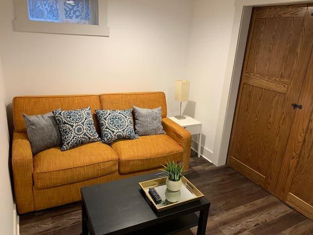 Flexible room!  Locking barn doors allow you to use the space as a living room, or close them and use the Queen sized American Leather Sleeper sofa, with premium memory foam mattress!  Walk-in closet!  There's also a brand new smart LCD TV.  Sleeps 2