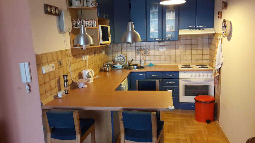 Comfortable flat with nice view - Prag - Daire