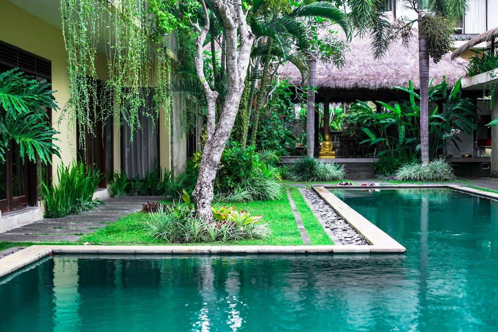 18,5 m long pool