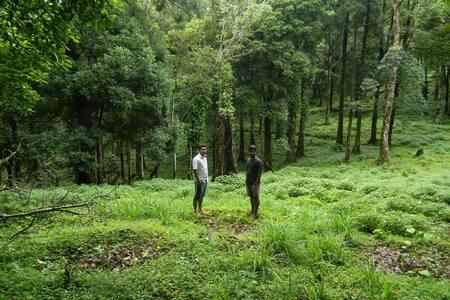 Highest Trekking Adventure Camp - Vythiri - Annat