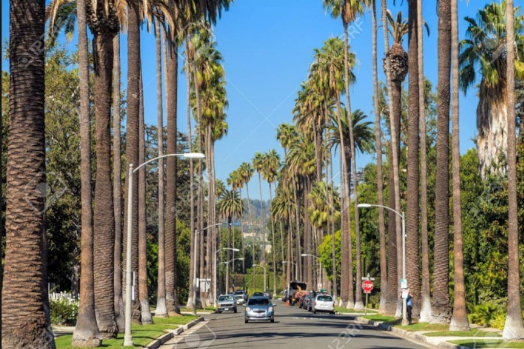 Welcome to the Sunshine state of California. Here's a preview of Beverly Hills. Your soon to be neighborhood along with the rich and famous! The Hollywood sign awaits you.