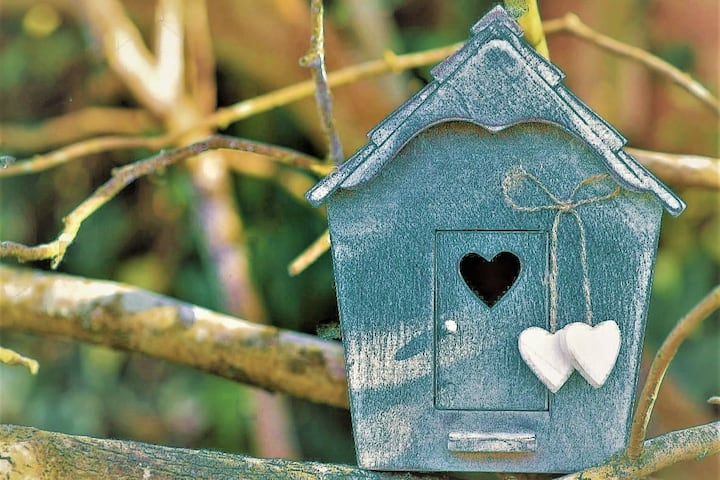 Bluebird Apartment  - Cosy,  like a real home.
