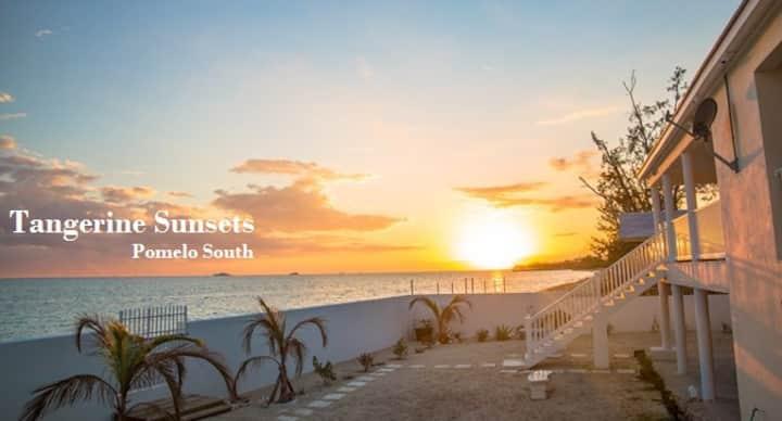 Tangerine Sunsets Pomelo South