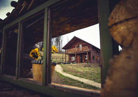 Peaceful Wooden Cabin by Forest and Mountain River