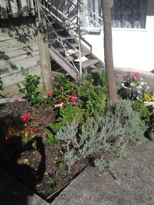 Out-door garden-1