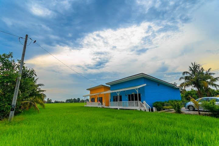 Anjung Pool Villa private pool in the paddy field