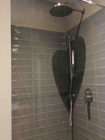 Spacious shower area, with separate hand shower.