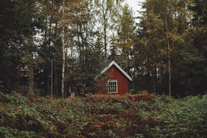 Real Norwegian cabin experience! - Eidsvoll