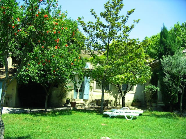 la juliane - Pernes-les-Fontaines - Apartamento