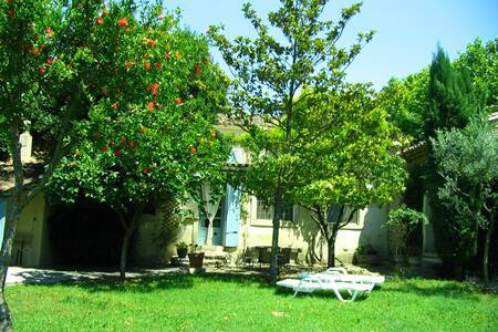 la juliane - Pernes-les-Fontaines - Departamento