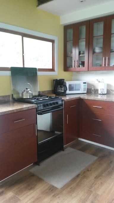 Modern kitchen with gas stove, refrigerator, coffee maker and microwave