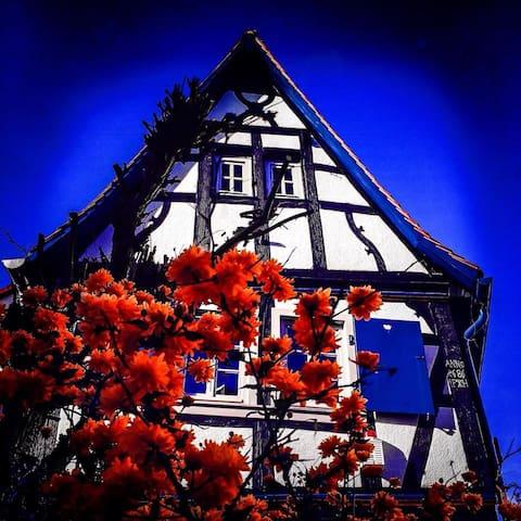 Hexenhäuschen in der Altstadt /Drh. nahe Frankfurt