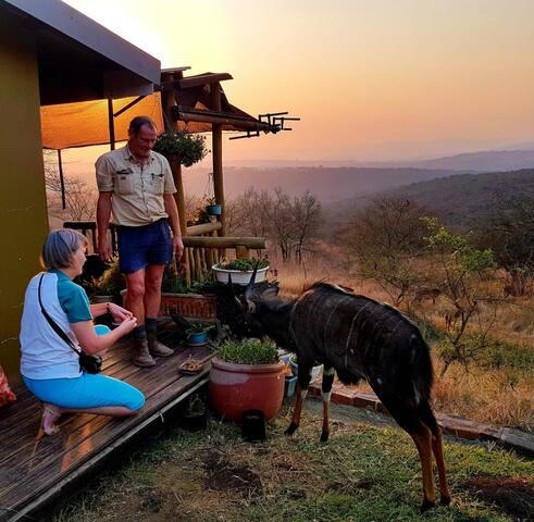 Fire Fly Lodge    Animal & Birdwatchers Paradise
