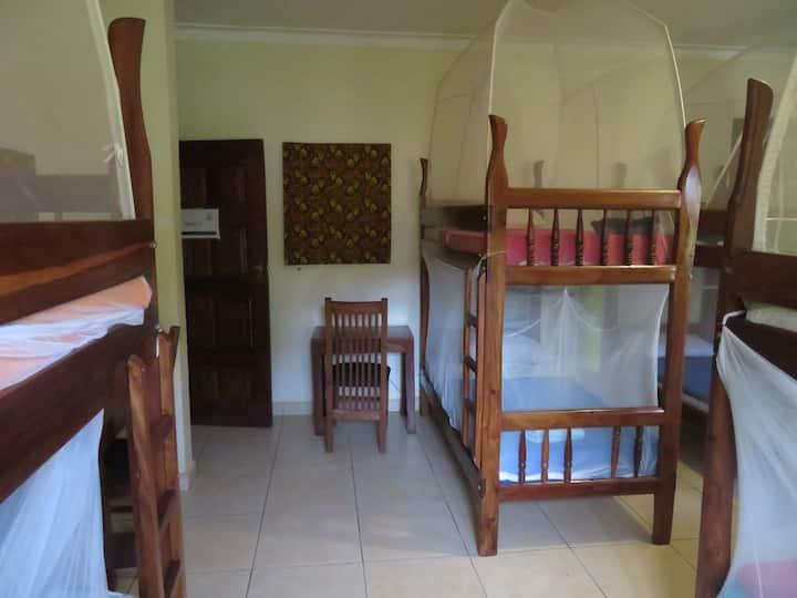Dorm beds at Bikeventures House Jinja
