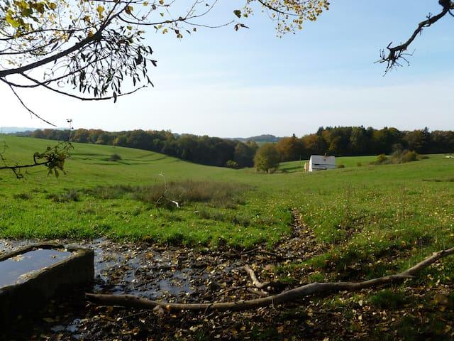 Gérardnoue, un havre de paix (annonce 1) - Florenville - Altro