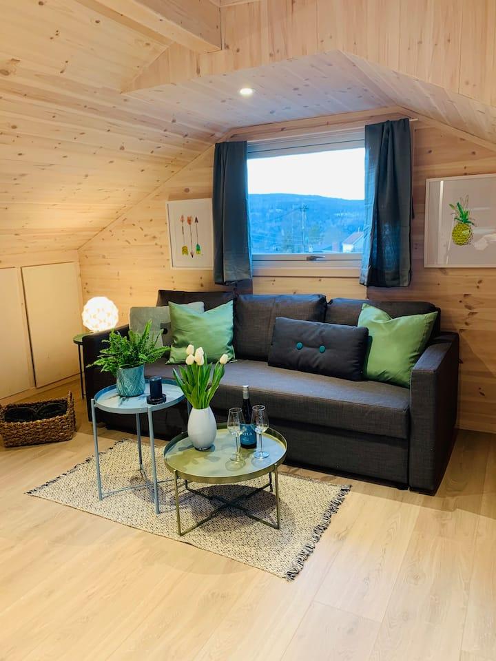 Nyoppusset og fin leilighet utenfor Oslo