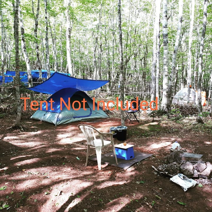"Nature Life campground  ""CAMPING"", P.E.I   (s"