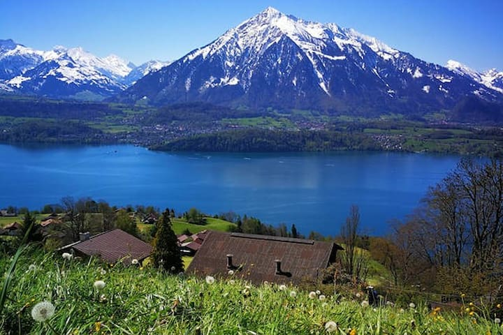 Splendid Swiss Alps&Lake View B&B Triple Room  2