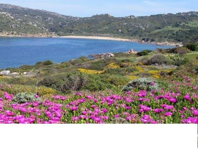 Trilocale accogliente sul mare a Porto Quadro - Santa Teresa Gallura