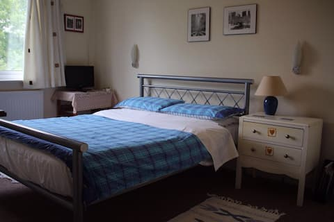 Large bright room in North London