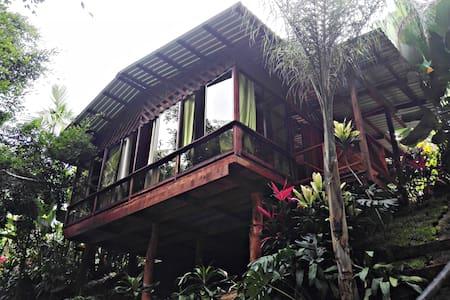 Arenal Tree Cabin-La Fortuna - San Carlos - Chatka