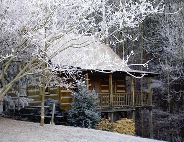 Rosewood Log Cabin - Townsend - House