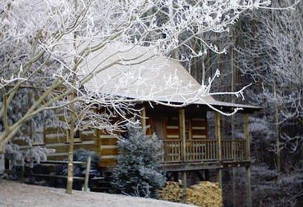 Rosewood Log Cabin - Townsend - Casa