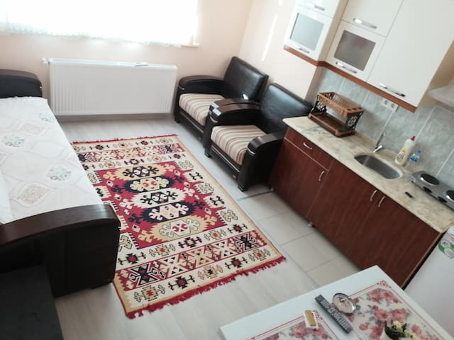 Your Family's House.Furnished full Apartment.