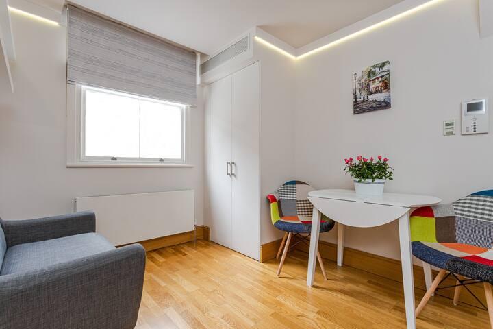 Studio apartment in Bloomsbury