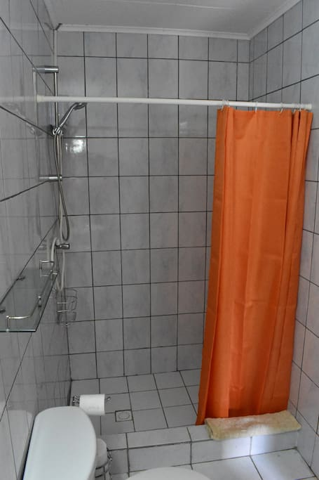 Bathroom shower area with waterheater