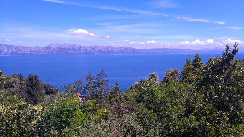 Perfect sea view Pansion Hazdovac 2 - Kozarica - Гестхаус