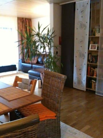 Nice flat near Wiesbaden