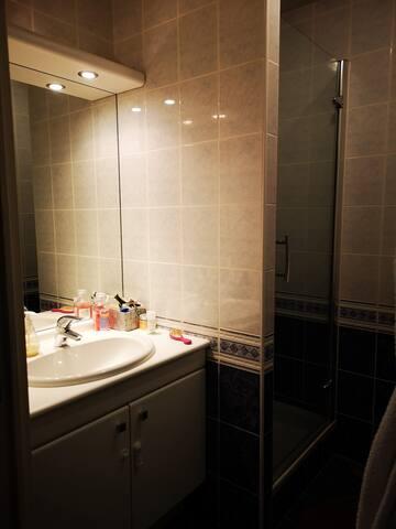 SDB avec douche attenante à la chambre parentale