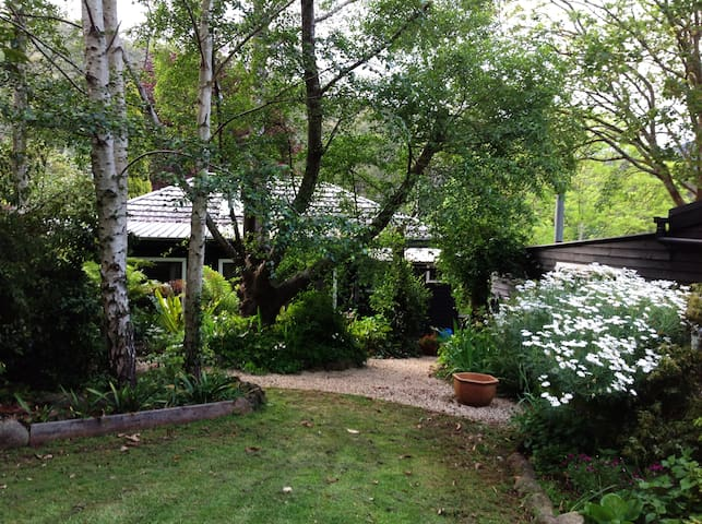 1/2 acre of beautiful established garden.