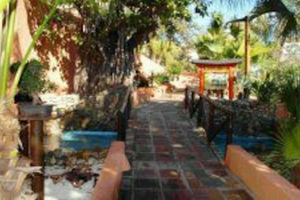 Parque el Majuelo