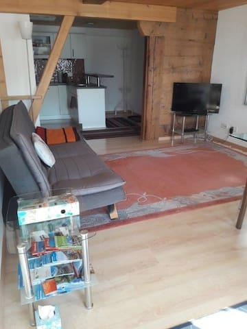 Wohnzimmer mit Blick in Küche und Garderobe