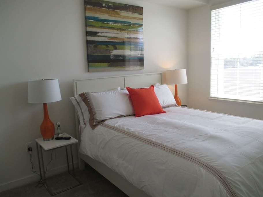 Luxury Furnished 1 Bedroom San Jose Apt Apartments For Rent In San Jose California United