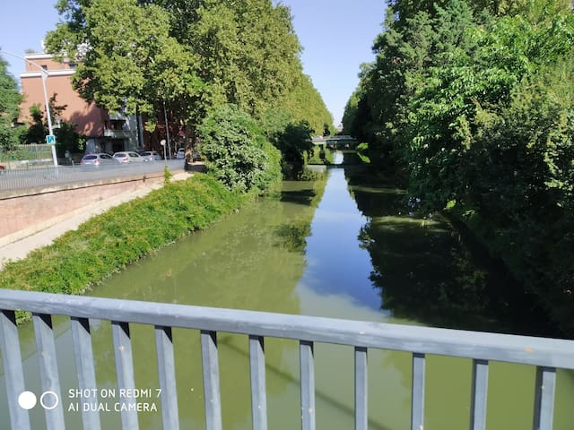 Canal du Midi à 800 m (footing, balade, commerces, bars etc.).