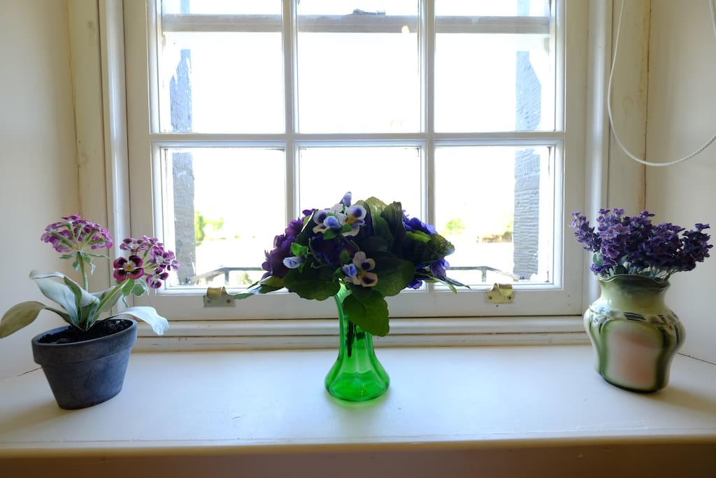 Georgian window looking over garden