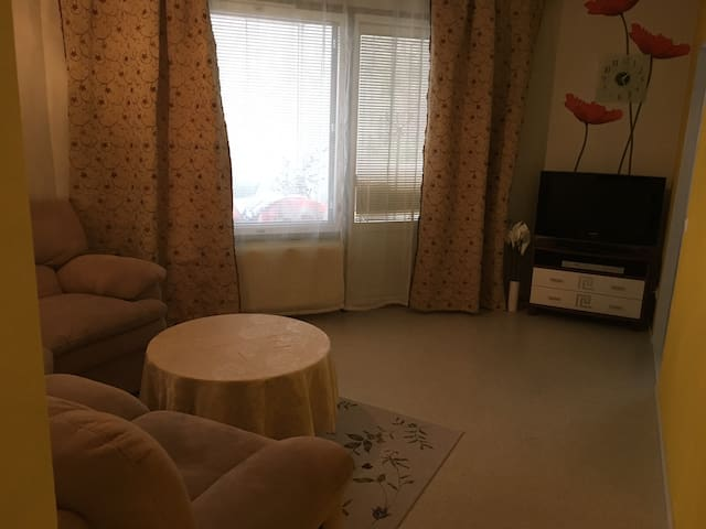 Cosy flat located in the center of Hervanta - Tampere - Wohnung