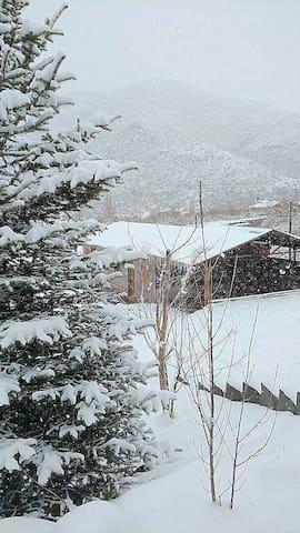 """Cabaña de Montaña Andina """"Arbol"""" (4 Pax) - Potrerillos - Srub"""
