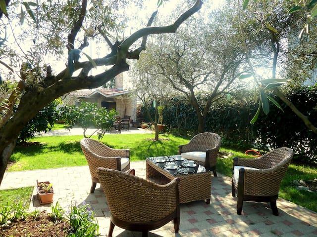 Charming apartment- near the Center - Zadar - Apartment