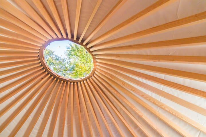 Beautiful yurt in nature- centre de l'hêtre