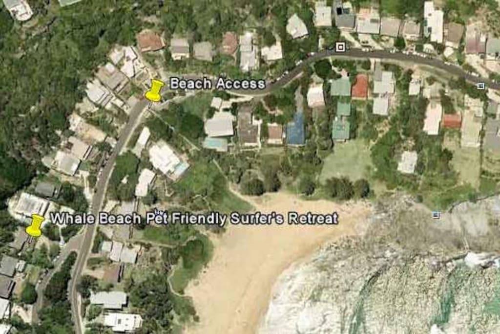 Easy 1-2 minute stroll to Whale Beach