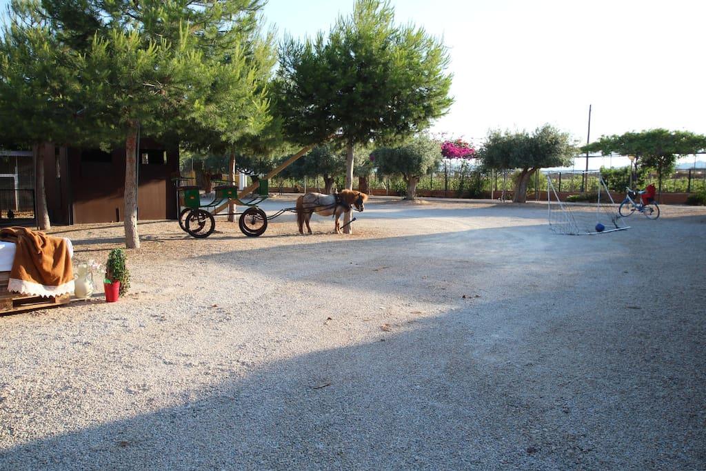 ¿Estás listo para un paseo en poni o en bicicleta por el campo? o un partido de futbol... / Are you ready for a ride on a pony or a bike in the countryside? or maybe a football match .