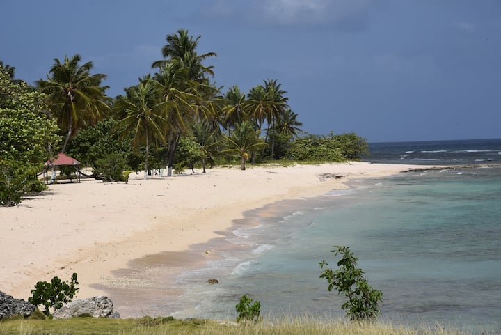 Caraibes Vacances Nord Guadeloupe